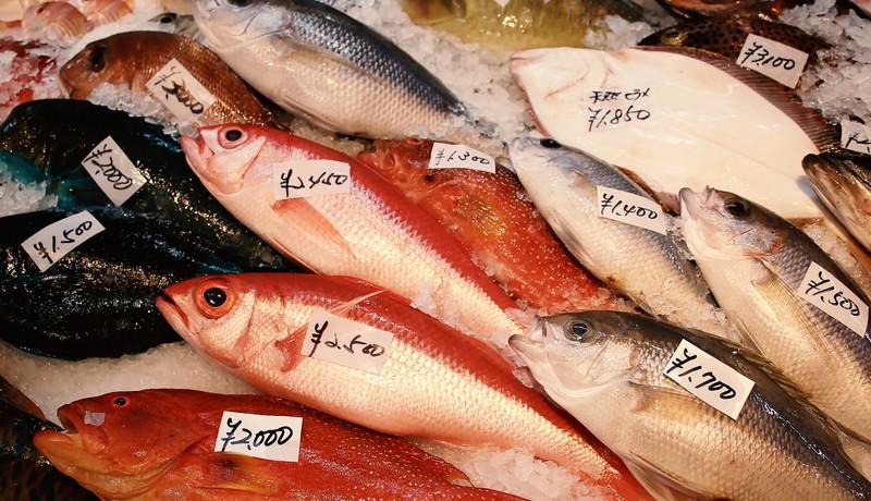 「腐っても鯛」の意味とは?意味や使い方を解説!