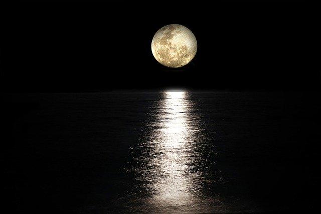 「月とすっぽん」の意味とは?意味や使い方を解説!
