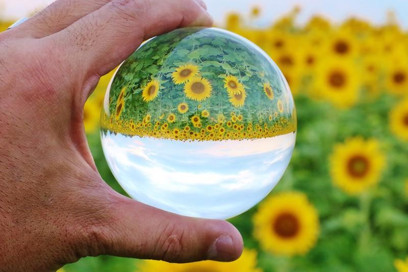 「瑠璃も玻璃も照らせば光る」の意味とは?意味や使い方を解説!