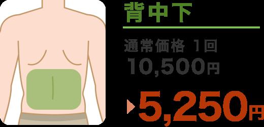 背中下 通常価格1回 10,500円 → 5,250円