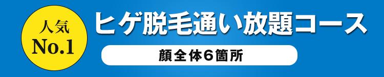 人気No.1 通い放題コース
