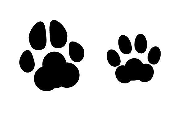 犬の猫の足跡