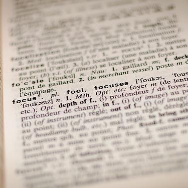 ハリネズミを英語で何と言う?またフランス語やドイツ語では何と言う?