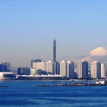 神奈川県の大型ペットショップ5選をご紹介!神奈川最大はどこ?
