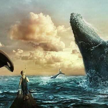 【夢占い】クジラの夢の意味15選!幸運を表す?