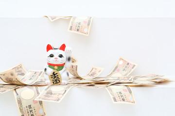 【手相】財運線で金運がわかる!あなたもチェック!