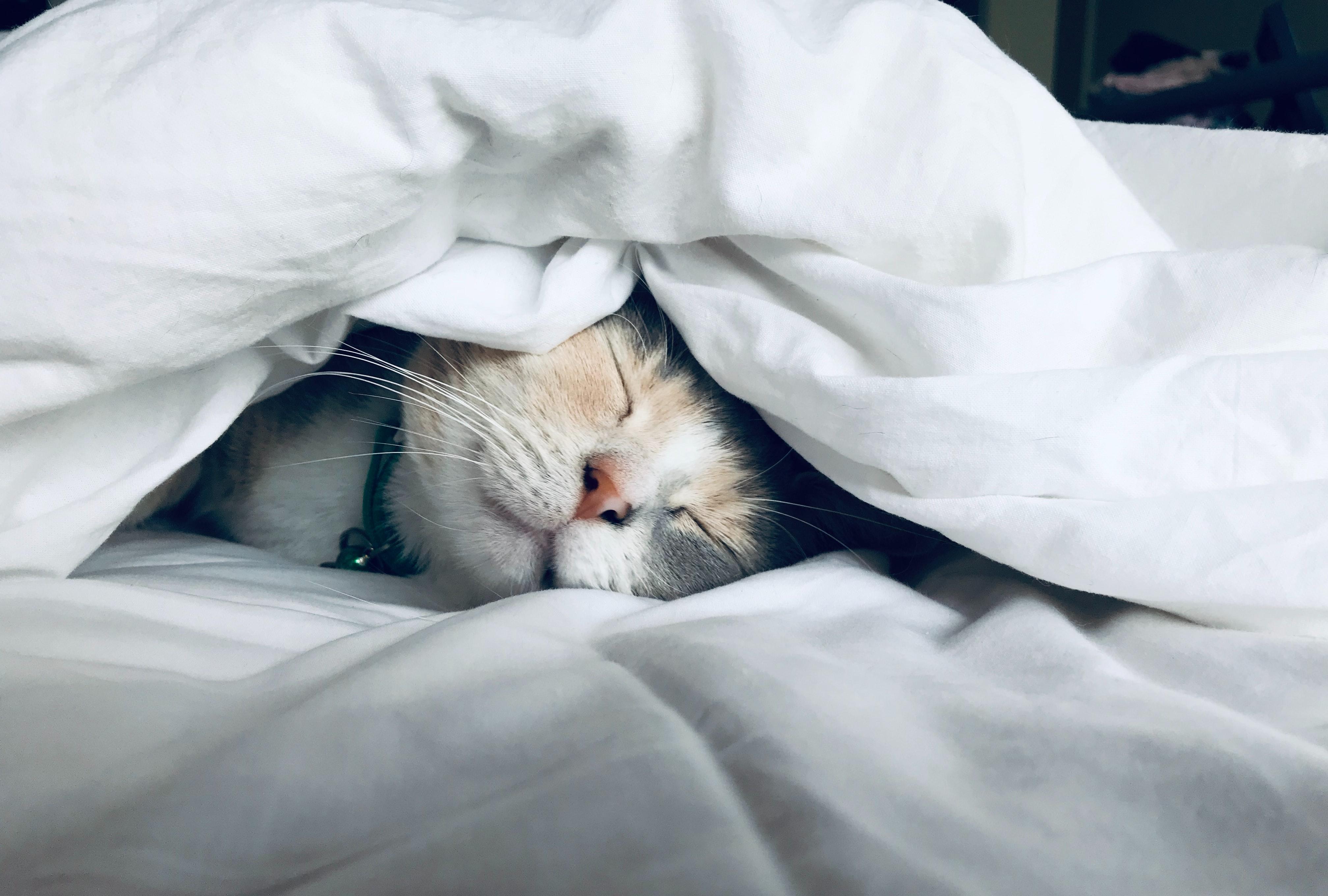 寝ても寝ても眠い時のスピリチュアル的な意味9選!人生の転機?
