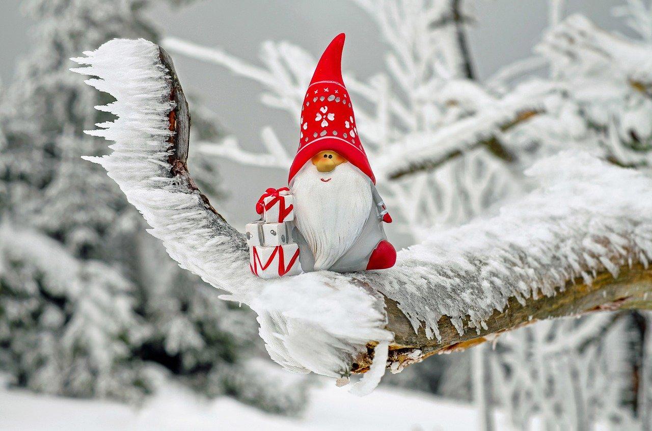 12月24日の誕生石・誕生花・星座・運勢・相性は?【365日誕生日占い】