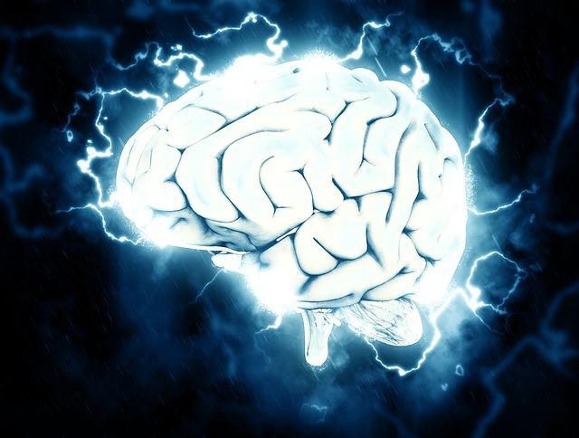 「英語脳」のイメージです。