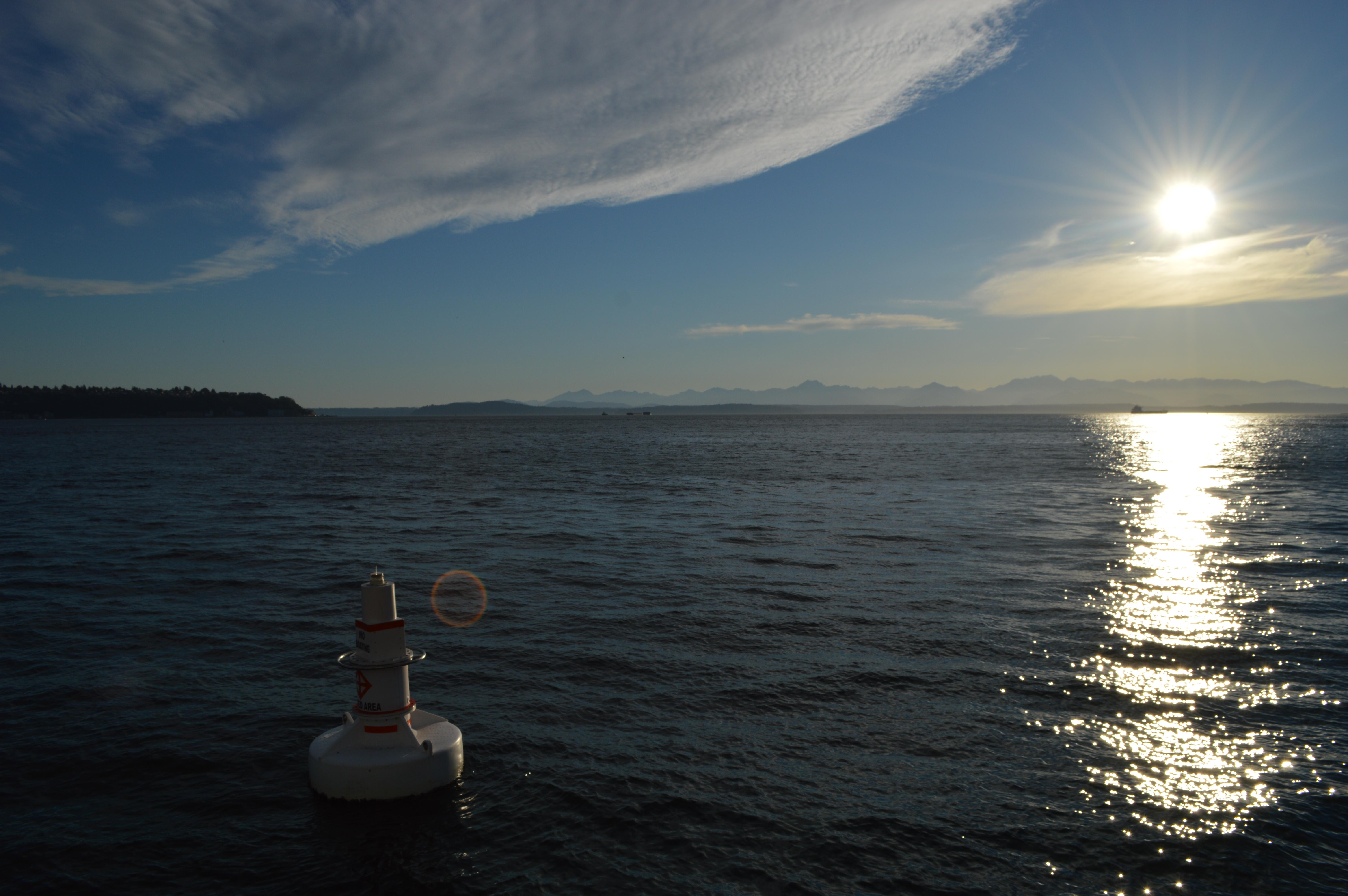 海と太陽の写真です。