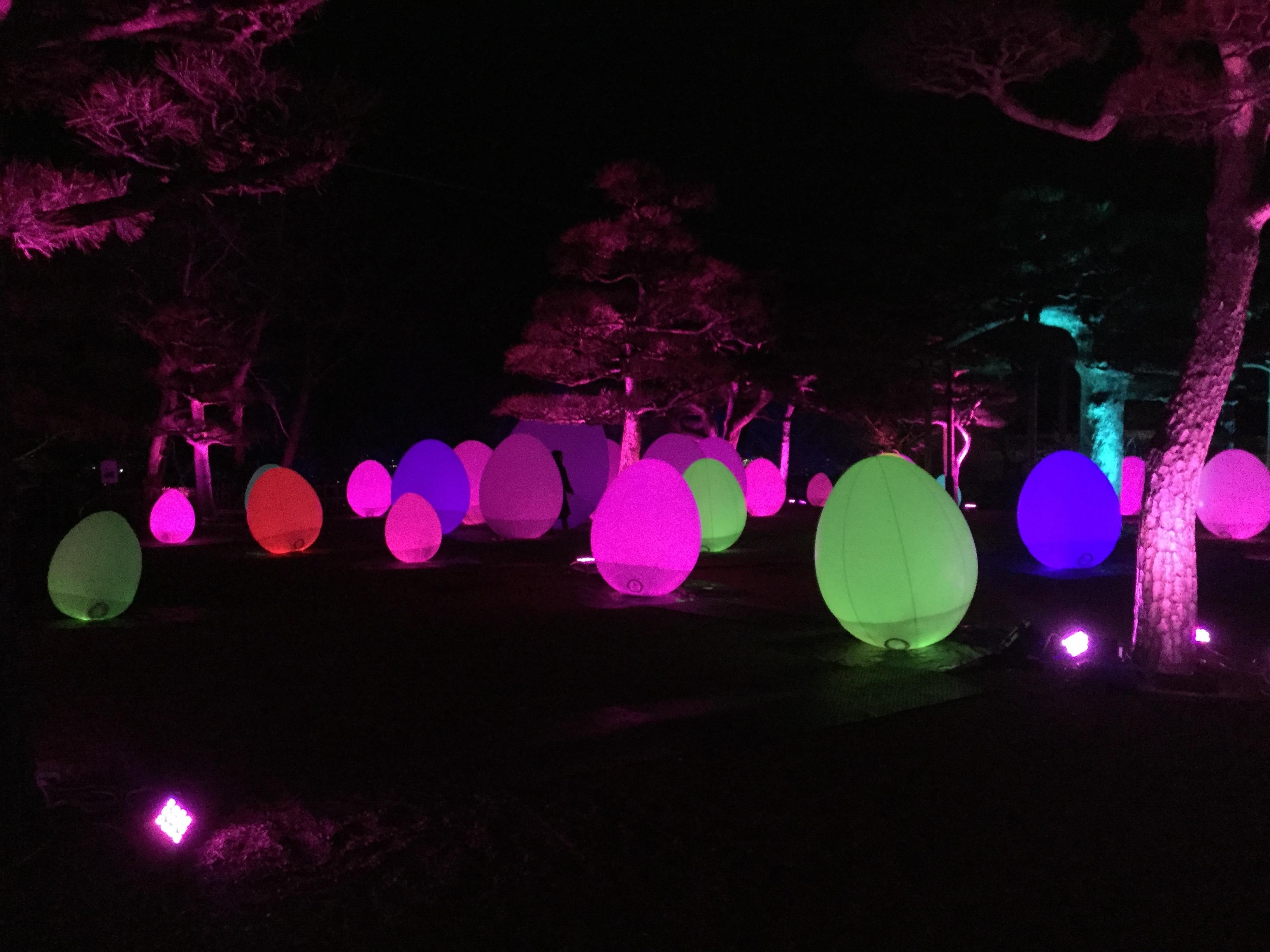 夜に光る卵の写真です。