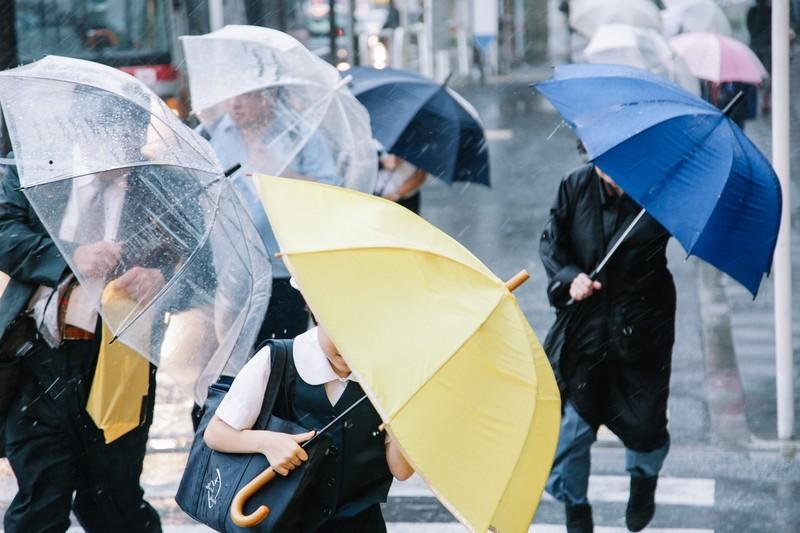 雨と傘のイメージです。