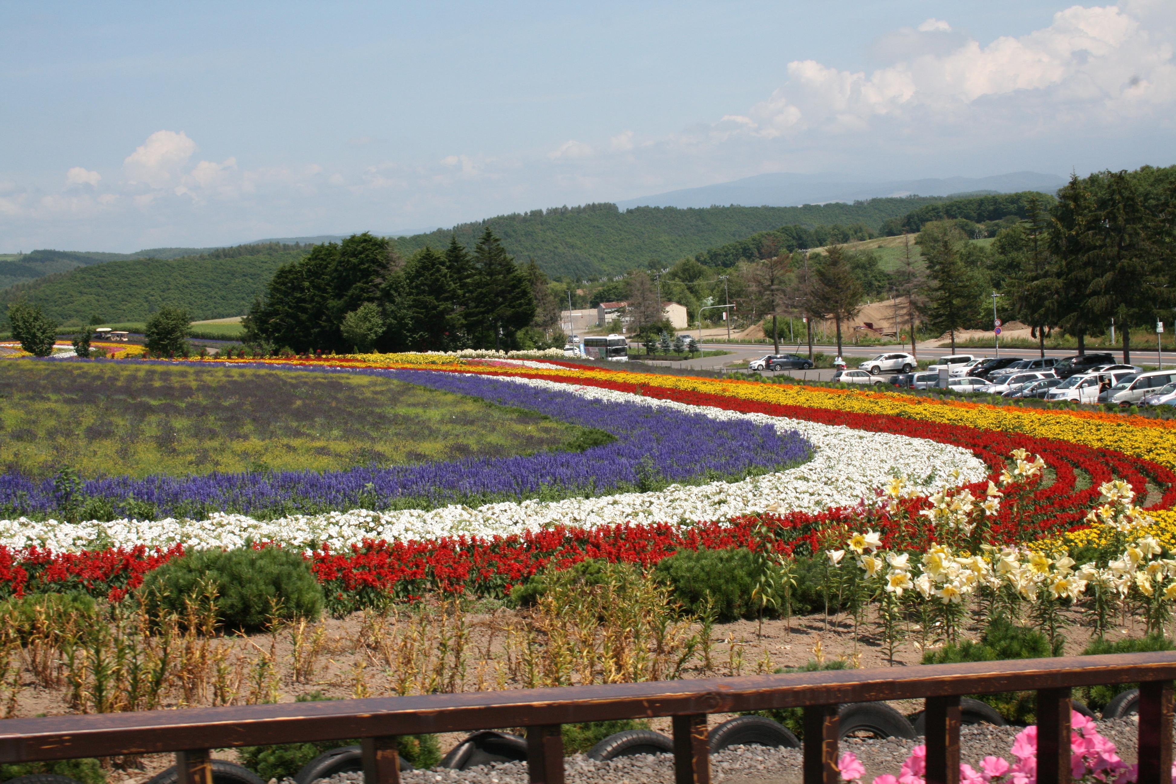 北海道 富良野の風景。