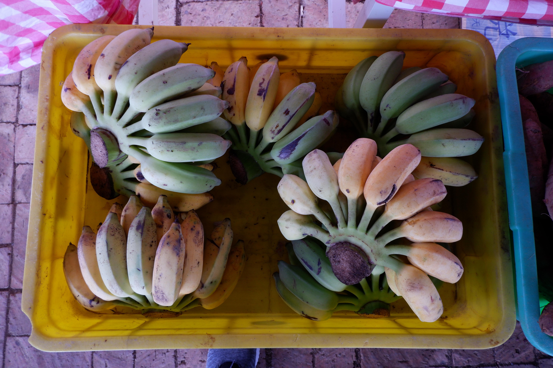 バナナの写真です。