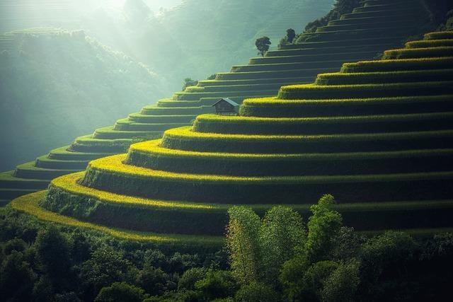 ベトナム田舎の風景