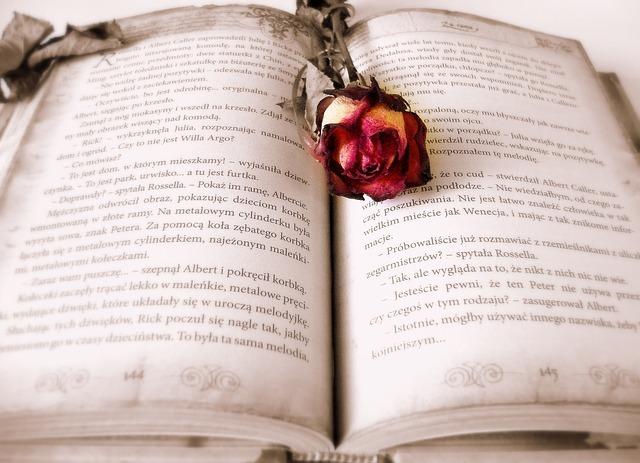 英語の本、バラ