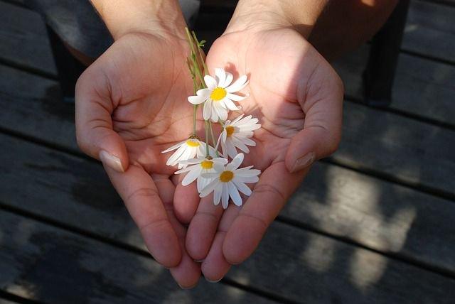 両手に花を載せている画像