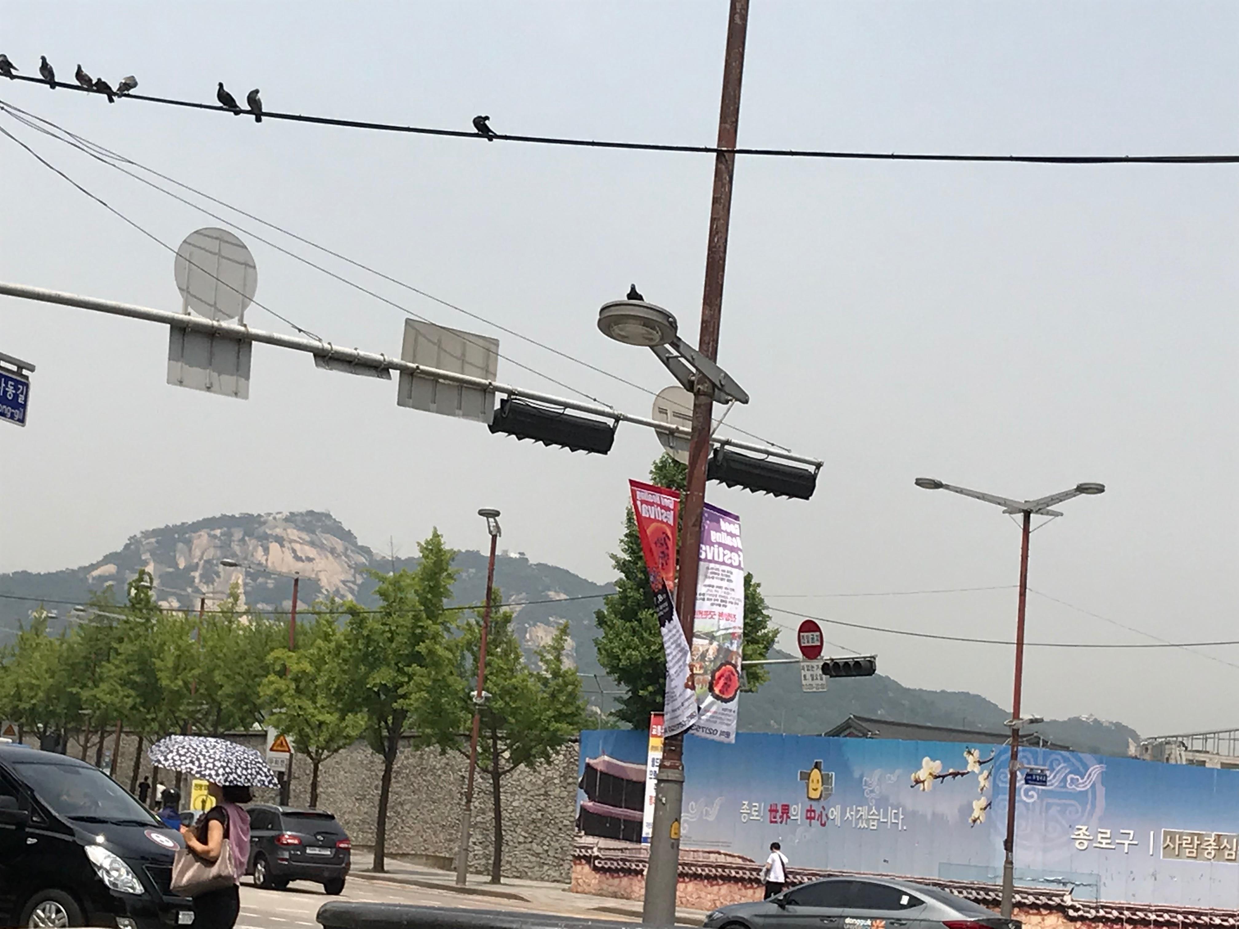 韓国らしい山々と車
