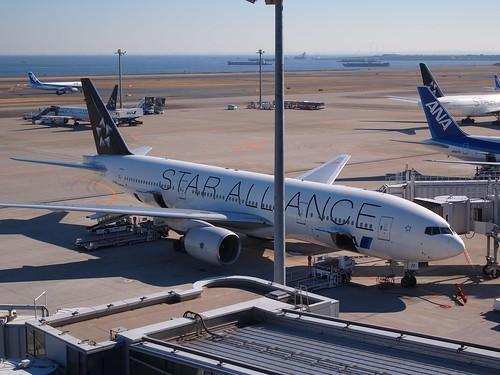 旅行券で飛行機のチケットが購入可能