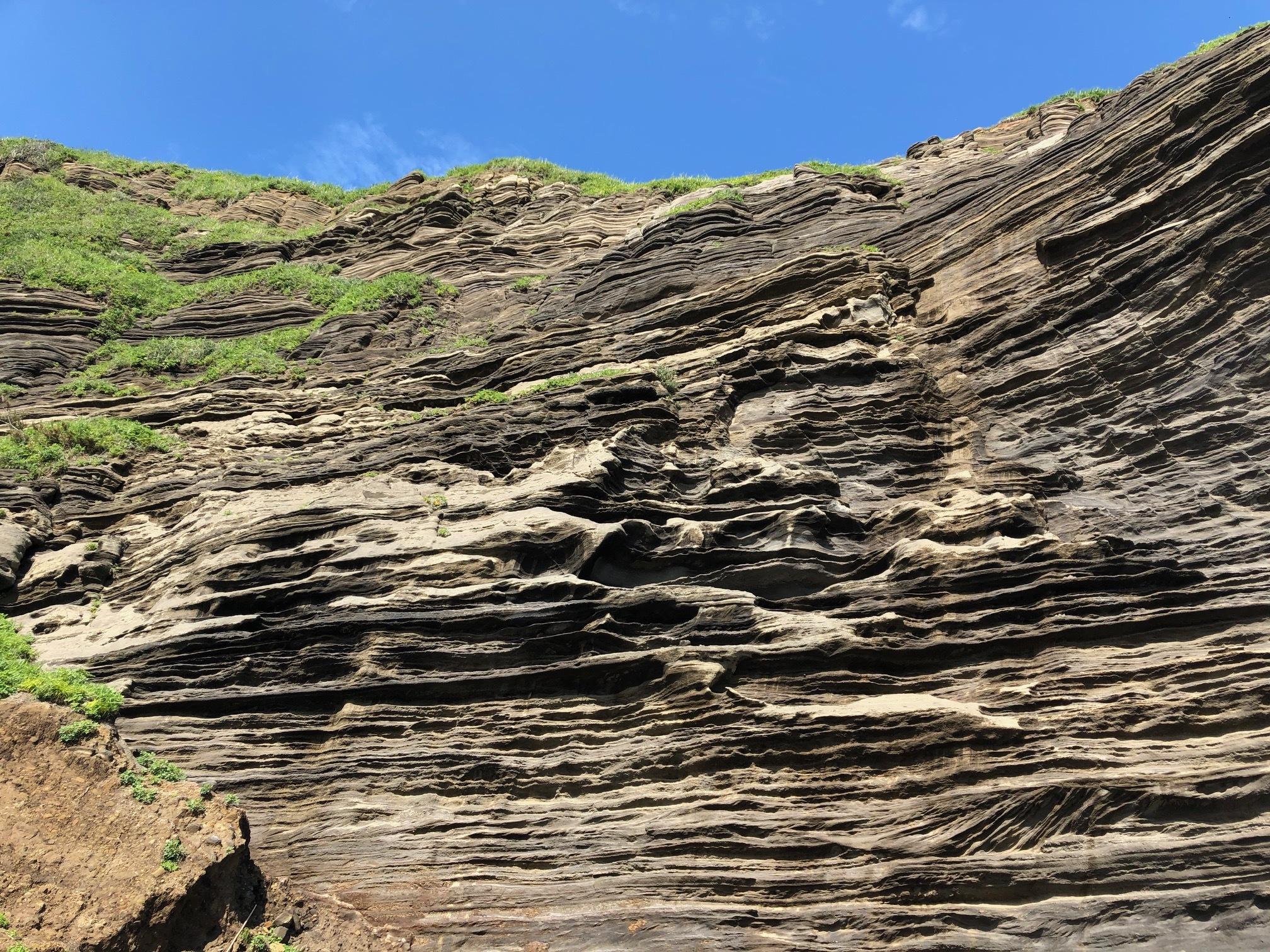 個人撮影:大房岬公園の海食崖