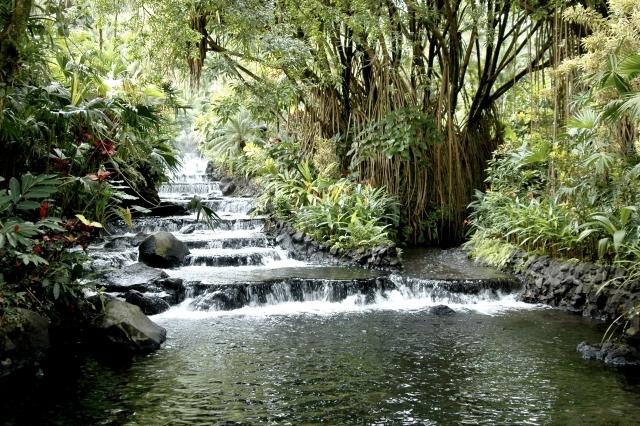 タバコン温泉リゾート