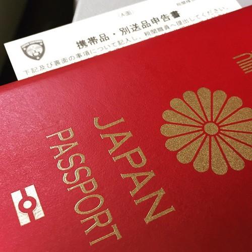 パスポートと税関の申請書
