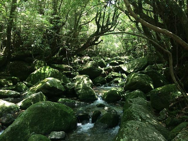 九州の絶景スポット18選!旅行で行きたい雄大な自然の景色をご紹介!