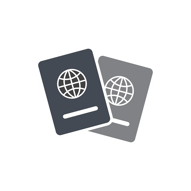 ビザとは?海外旅行するのにビザが必要な国、取得方法を解説!