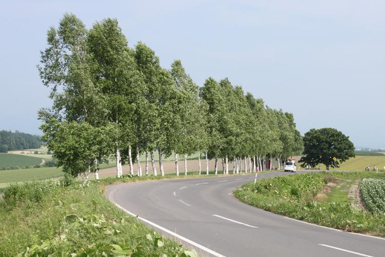 北海道の絶景ドライブスポットランキング7選!旅行の移動中も楽しめる!