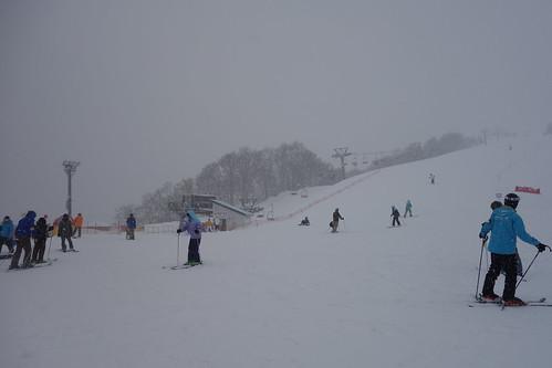 冬の新潟観光スポットおすすめ20選!人気の名所や穴場のスポットをご紹介!