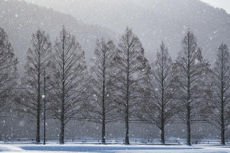 冬の三重でおすすめの観光スポット9選!人気の名所や見どころをご紹介!