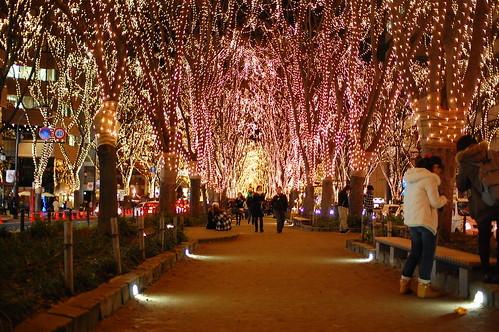 冬の仙台でおすすめの観光プランは?日数別の満喫プランをご紹介!