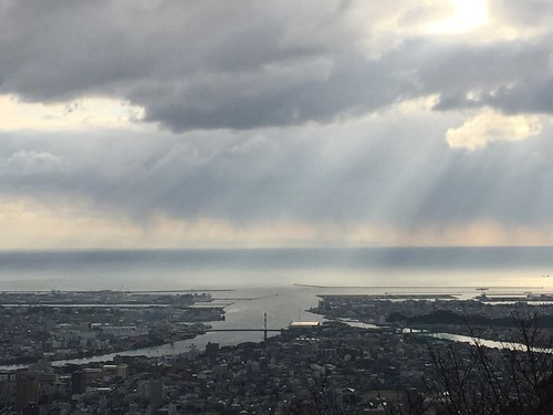 冬の和歌山観光コース4選!人気のスポットを回るプランをご紹介!