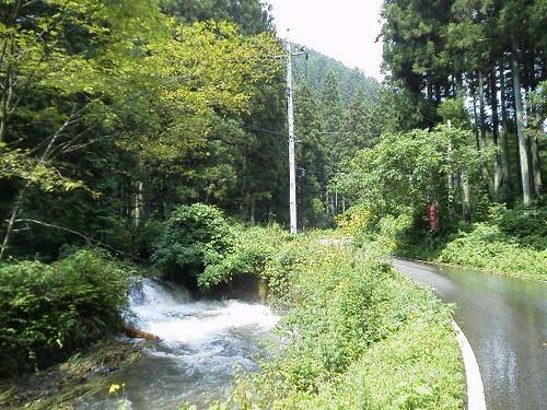 冬の栃木で外せない自然の魅力を感じるスポットをご紹介!