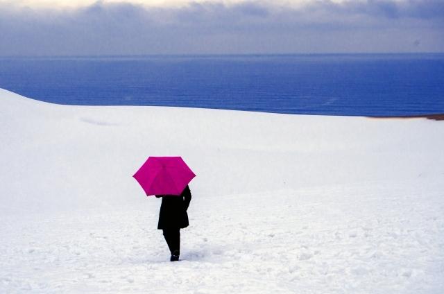 冬の鳥取でおすすめのデートスポット12選!人気の観光地などをご紹介!