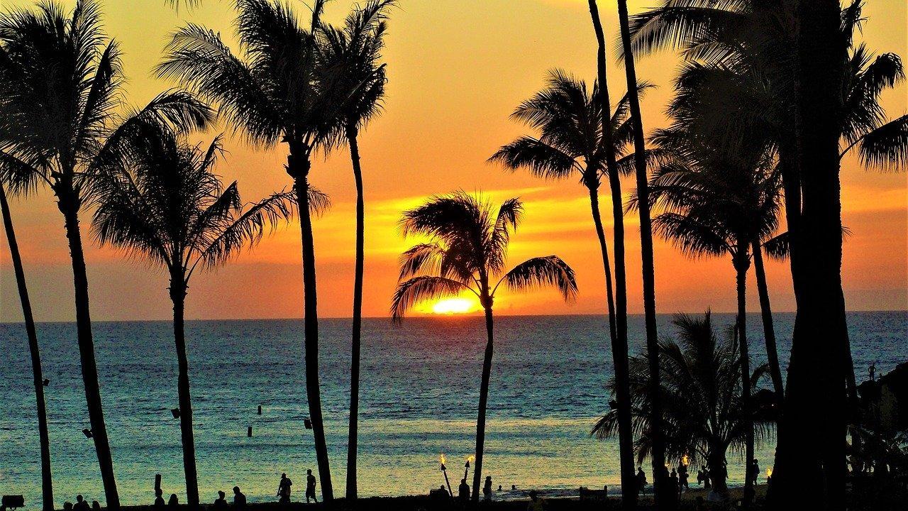 ハワイにある空港一覧!日本からハワイに行くときに着く空港はどこ?