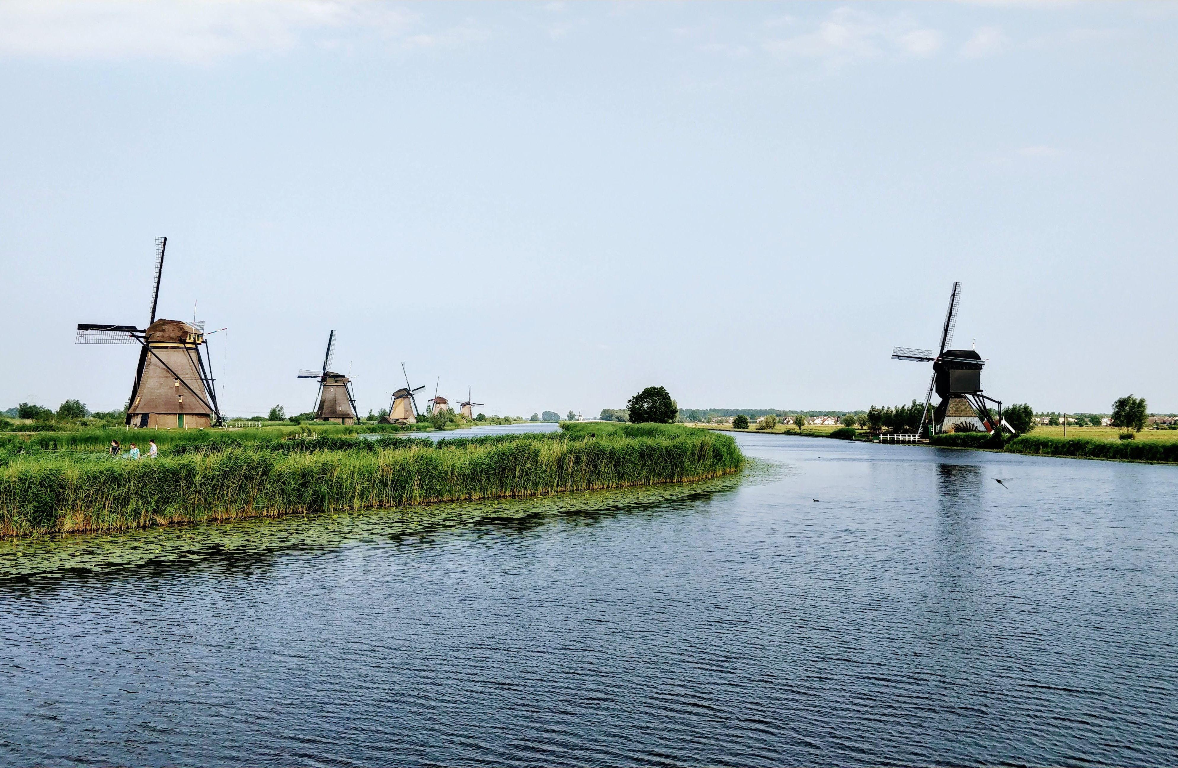 オランダ移住の条件や移住にかかる費用を解説!