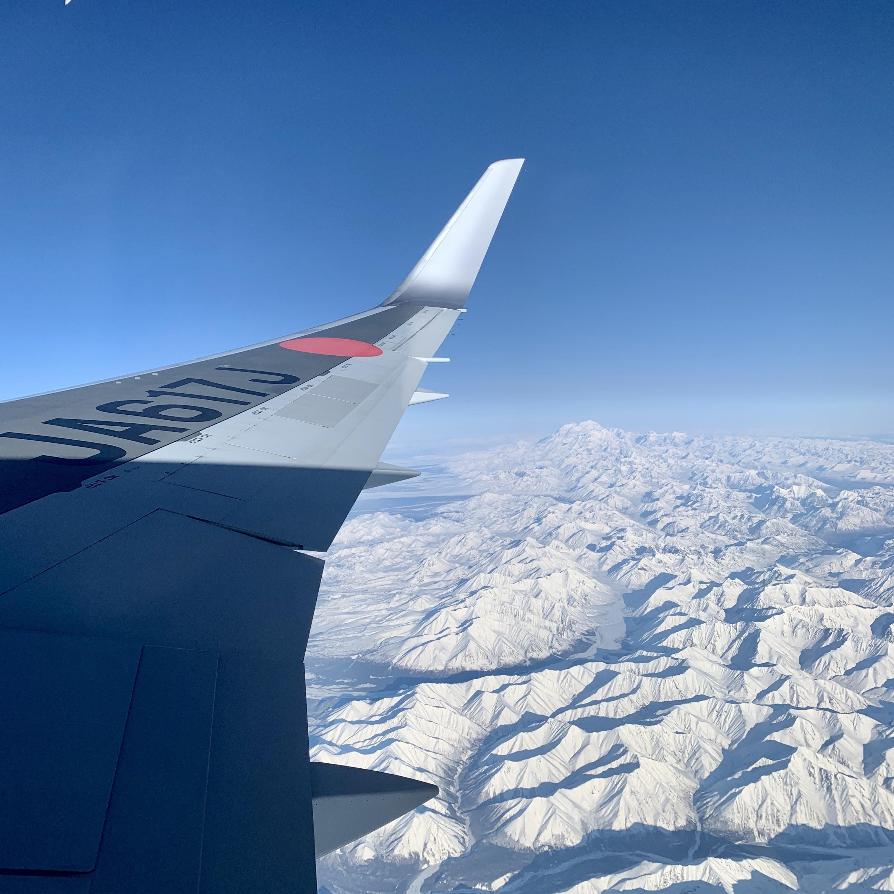 JALのビジネスクラスは何が違う?サービスや航空運賃など特徴を解説!