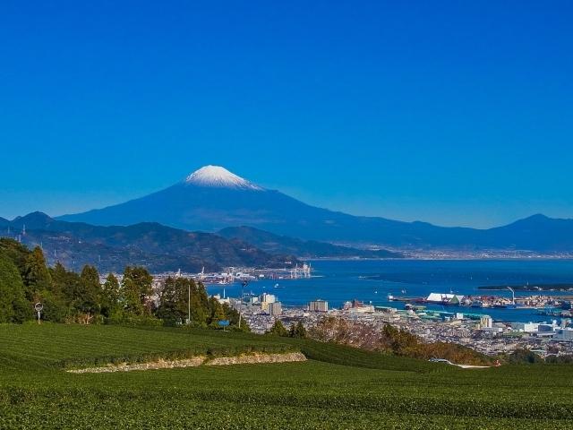 静岡旅行で外せないおすすめスポット20選!人気の見どころをご紹介!