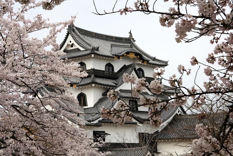 春を満喫!3月におすすめの人気旅行先30選!国内旅行で迷ったら要チェック!