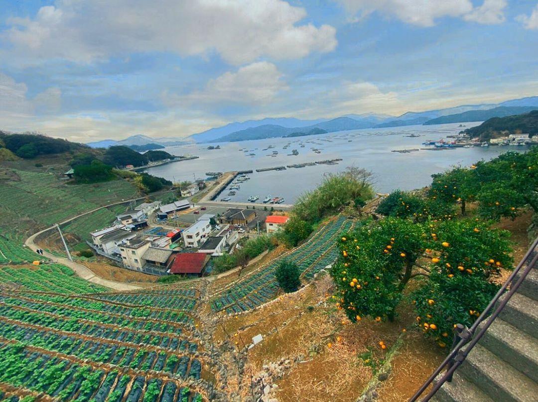 愛媛県の面積は全国何位?県内の市区町村面積ランキングもご紹介!