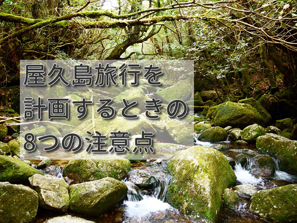 屋久島旅行を計画するときの注意点は?おすすめの季節などもご紹介!
