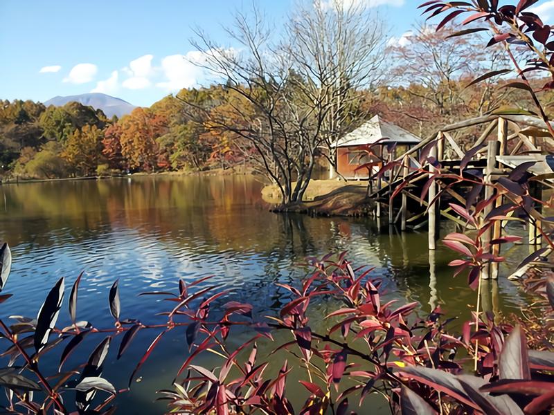 軽井沢タリアセンの見どころをご紹介!都会の喧騒を忘れて大自然を楽しもう!