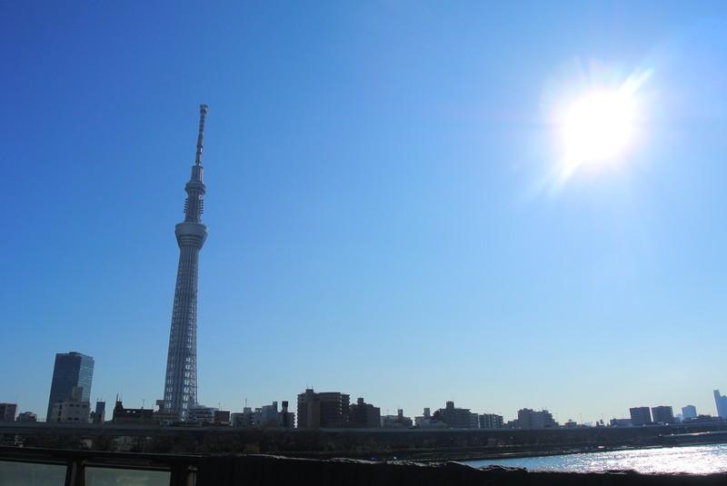 東京都の大きさはどのくらい?面積・人口・人口密度を比較解説!