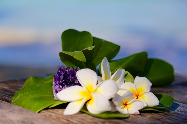 ハワイ諸島は太平洋に浮かぶ自然豊かな楽園!主な8つの島の特徴を解説!