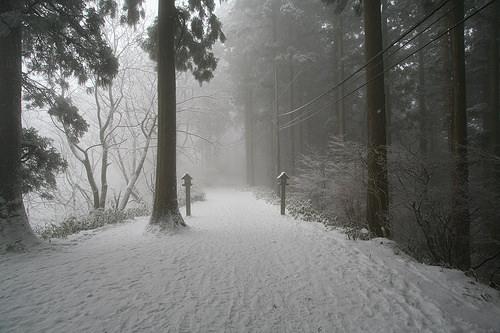 山 積雪 情報 金剛 金剛山(御所市)天気|気温・風速・日の出・積雪
