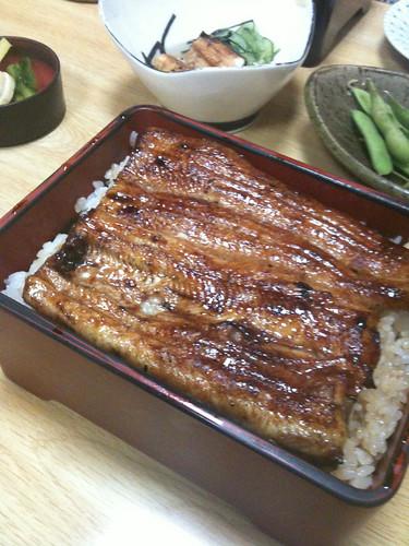 shijuku eel