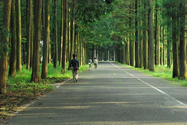 観光 那須 那須の温泉|那須町観光ガイド|一般社団法人 那須町観光協会