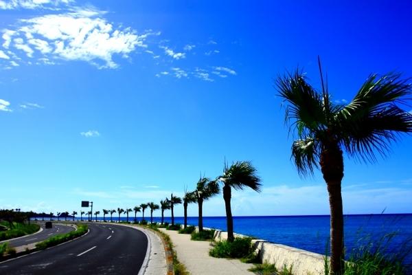 海 の 見える カフェ 沖縄