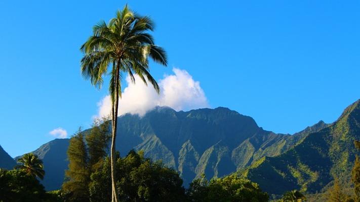 時間 ハワイ